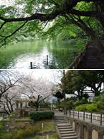 郊外公園・井の頭公園(T6) 震災復興公園・元町公園(S5)