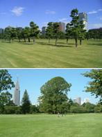 帝都の広場・皇居外苑(M22) 西洋式庭園・新宿御苑(M39)