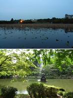 名所の継承・上野公園(M9) 近代公園・日比谷公園(M36)