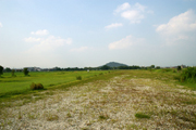 自然を拠り所として都が置かれた(奈良県橿原市藤原京跡)