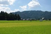 重要伝統的建造物保存地区:五個荘金堂(滋賀県東近江市)