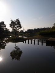 湿地再生とデザイン(茨城県古河市)