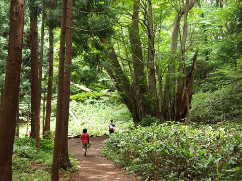 札幌円山公園