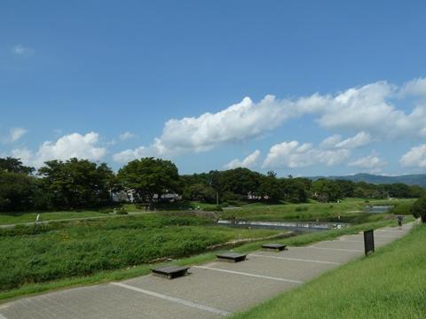 賀茂川右岸