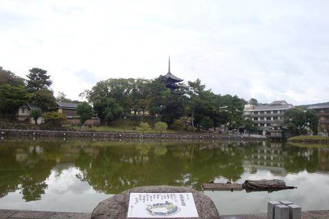 猿沢池から興福寺五重塔への眺望