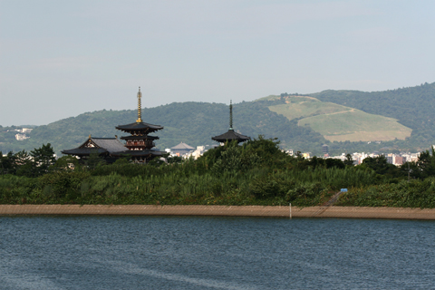 西ノ京大池から薬師寺、若草山への眺望