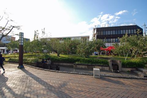 飯田市リンゴ並木