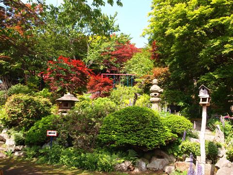 中野植物園